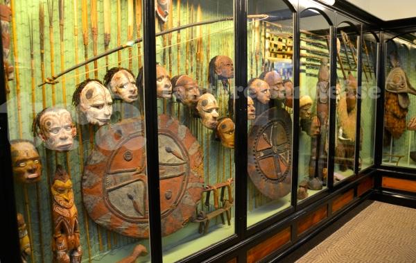 southaustralianmuseum