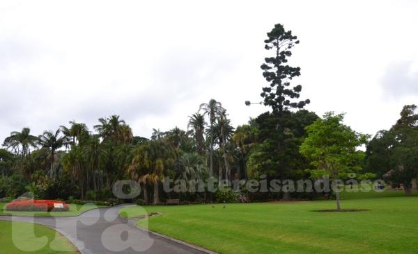 royalbotanicalgarden#1