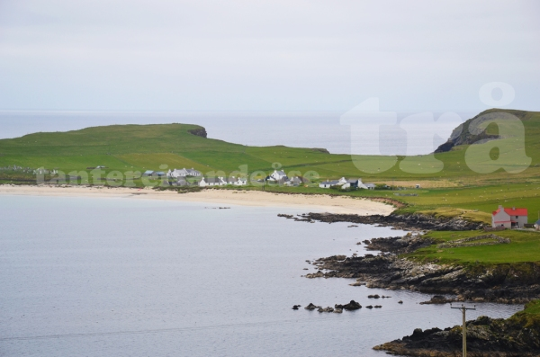 shetland#1