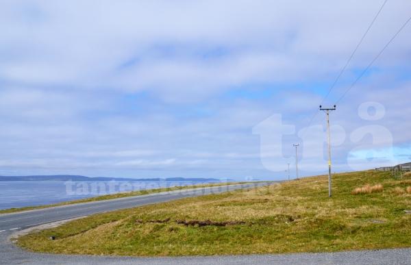 shetland#16