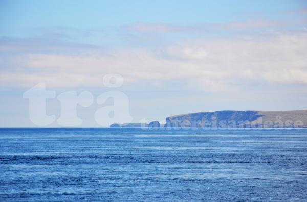 shetland#20