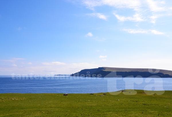 shetland#24