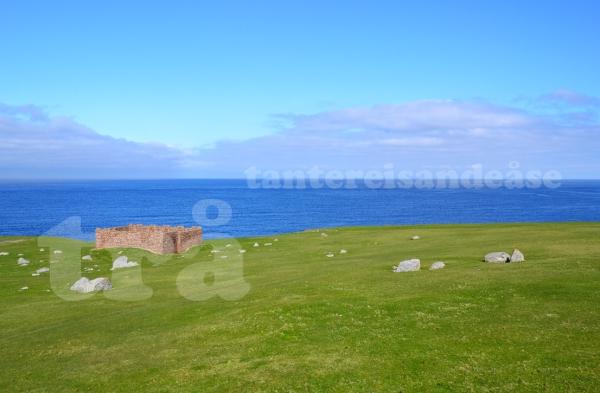 shetland#25