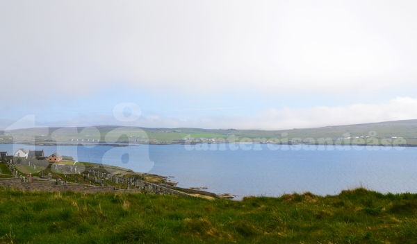 shetland#34