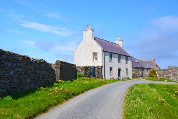 shetland#36