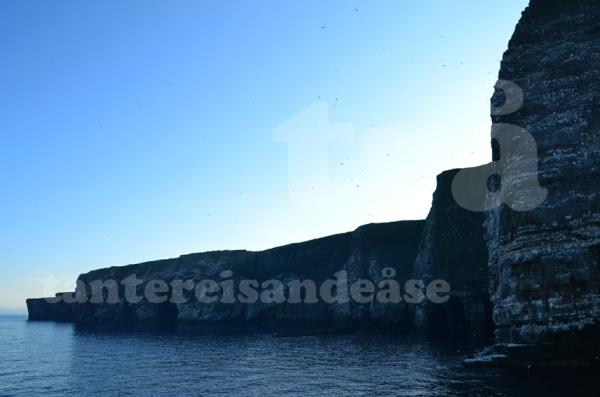 shetland#42