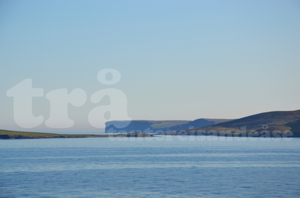 shetland#44