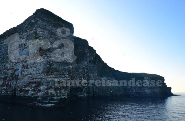 shetland#45