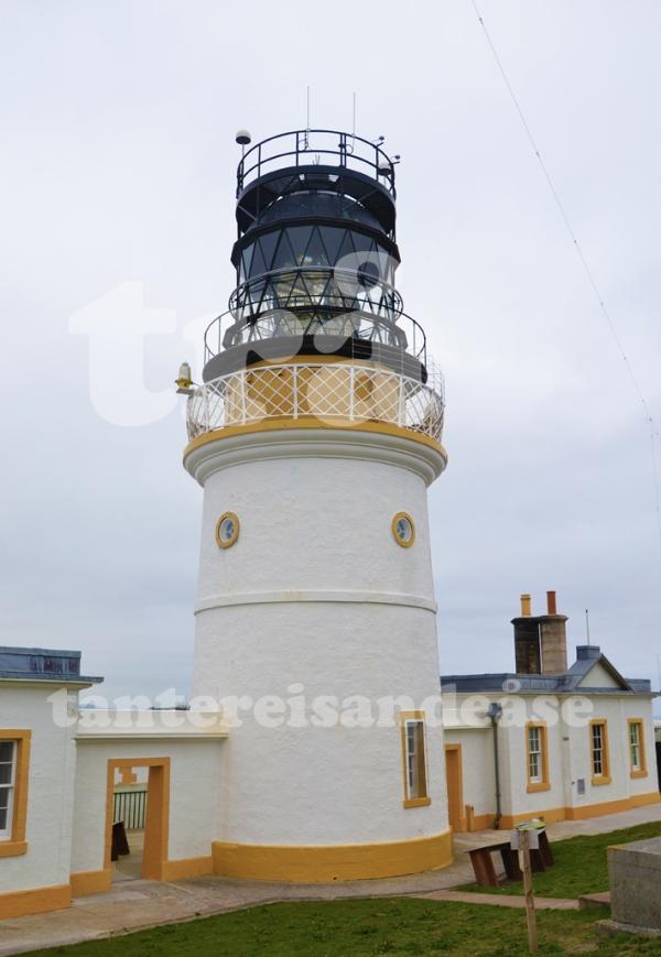 shetland#5