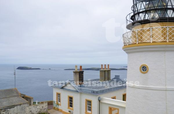 shetland#6